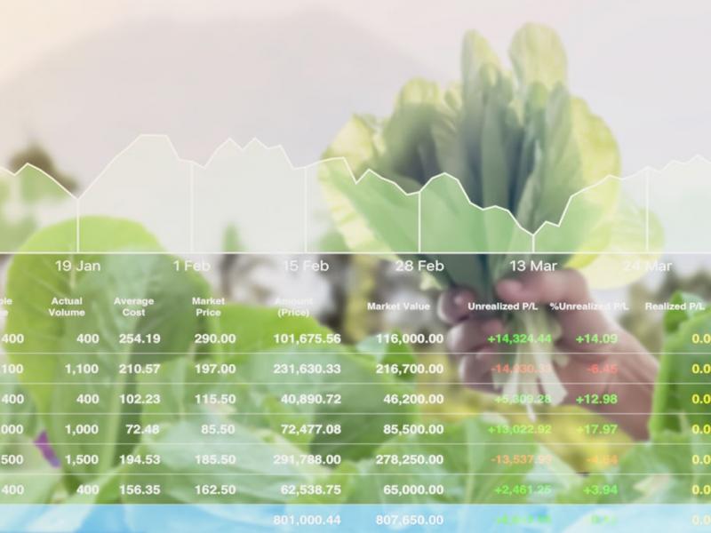 Hệ thống thông tin An toàn thực phẩm Quốc gia