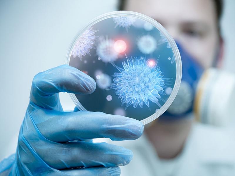 Hệ thống quản lý giám sát bệnh truyền nhiễm (eCDS)