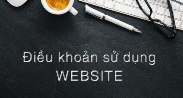 Điều khoản sử dụng website Tổng công ty Giải pháp doanh nghiệp Viettel